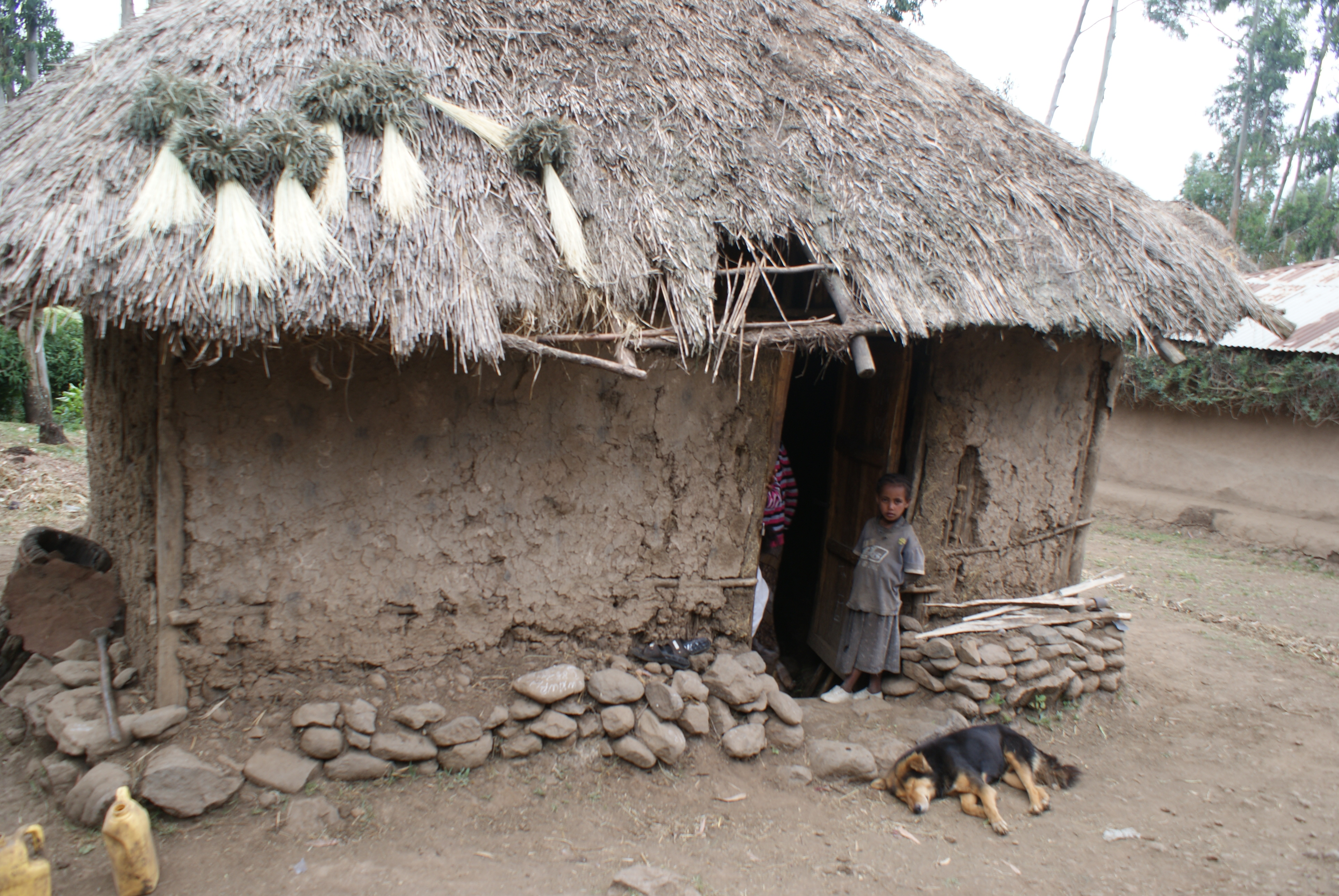 Image Gallery Ethiopia Houses